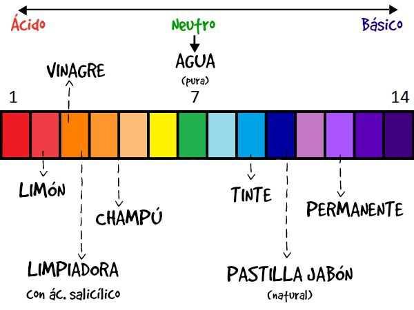 Cuadro Sinóptico de las bases y los ácidos