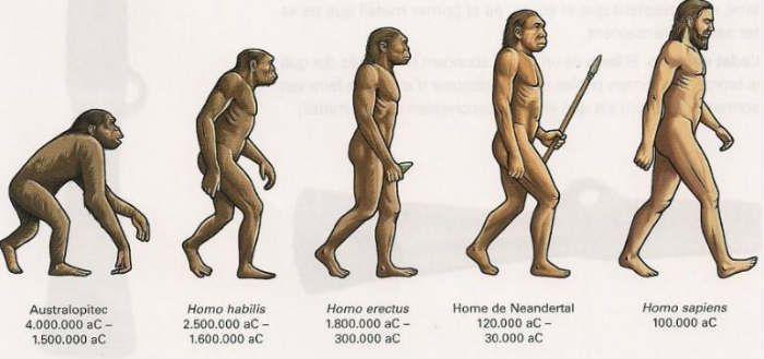 La Prehistoria - (Definición, División y Cuadro Sinóptico)