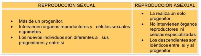 Cuadro Comparativo de la Reproducción Sexual y Asexual
