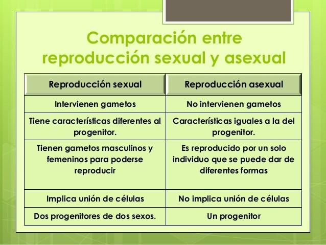 ¿Qué es la reproducción en los seres humanos? – Definición