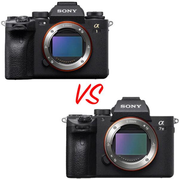 Sony A 1 vs Sony A7III